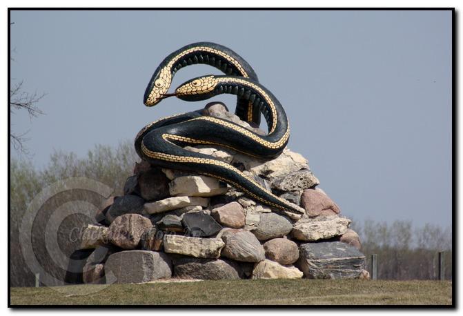 narcisse snake dens1