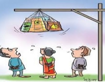mulya mahagi price